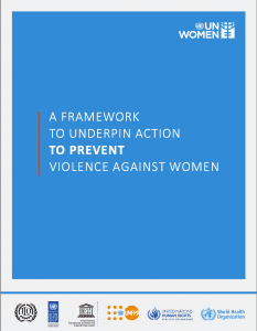 A framework to underpin action to prevent VAW
