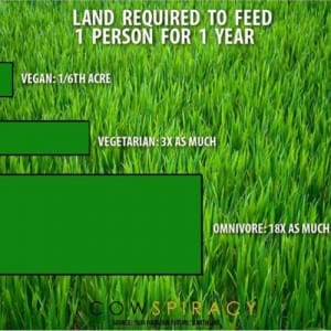 cowspiracy land